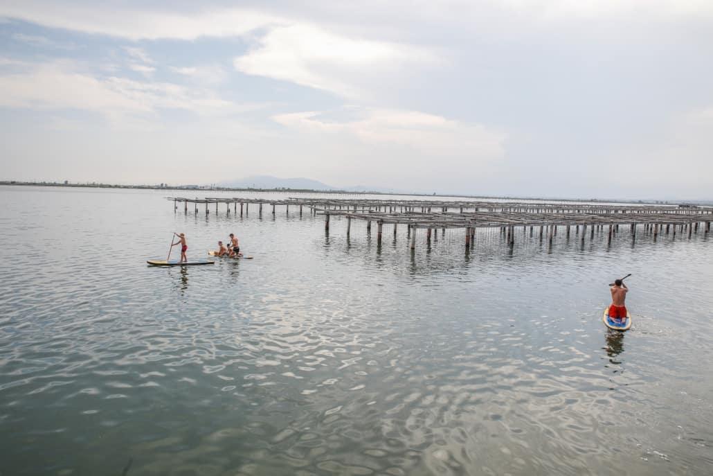 Pat. Mun Turisme l'Ampolla - Vivers marisc - Autor Albert Iniesta